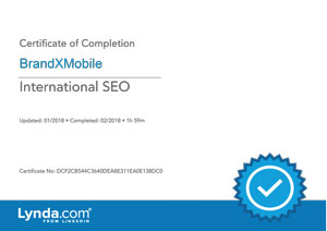 International SEO Certificate
